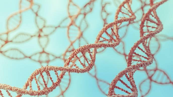 Gene Defect Found To Trigger Lupus Symptoms